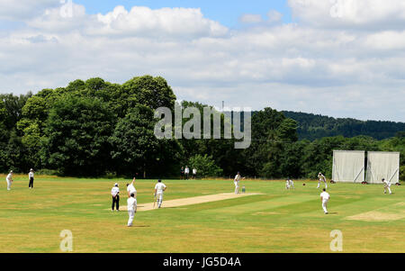 General view of a local cricket match (Liphook versus Rowledge) near the rural village of Liphook, Hampshire, UK. - Stock Photo