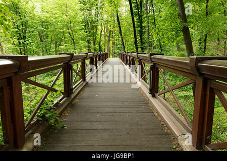 A new large wide wooden bridge in a light green old park, traversing a deep gorge - Stock Photo