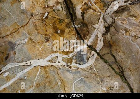 Close up of cracked and patterned stone rock on shore line of Eype beach, Symmondsbury, near Bridport, Dorset, UK. - Stock Photo