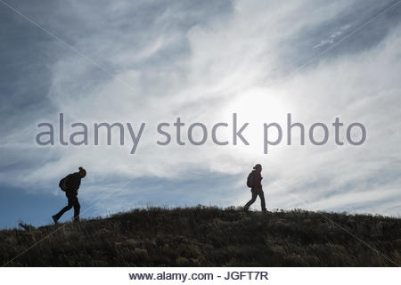 Biologists trek to locate a wolf den belonging to the Eight Mile Wolf Pack. - Stock Photo