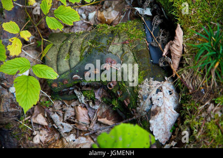 Travelling shoe rots in the wood - Rotting hiking boat, Wanderschuh verrottet im Wald - Rotting hiking boot - Stock Photo