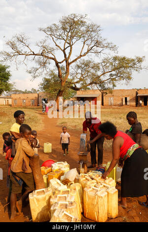 Water chore in a Ugandan village. Uganda. - Stock Photo