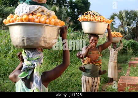 Women carrying platter with corn on head. Togo. - Stock Photo