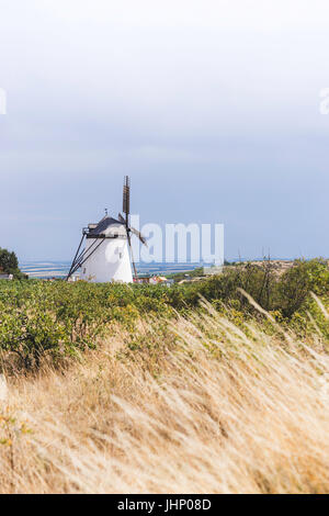 Austrias last fully functional windmill in the vineyards. - Stock Photo