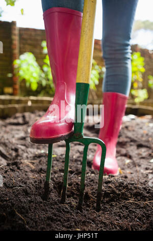 Low section of woman wearing pink rubber boot standing with fork on dirt at backyard - Stock Photo