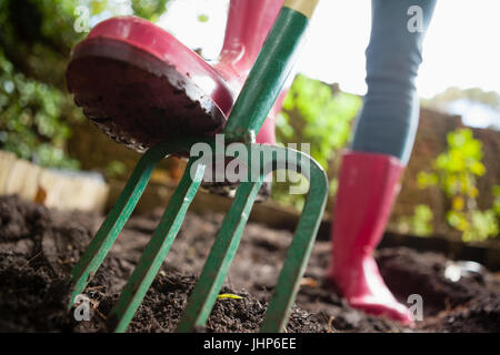 Close-up low section of woman wearing pink rubber boot standing with fork on dirt at backyard - Stock Photo