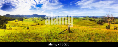 Endless lush green grass pasture of australian rural agricultural farms to grow cattle, bulls, cows and sheep in - Stock Photo