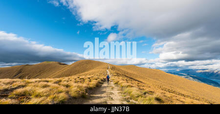 Female hiker on hiking trail to Isthmus Peak, Isthmus Peak Track, Grassland, Otago, South Island, New Zealand - Stock Photo