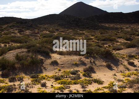Yellow sand on desert landscape. Panorama view. Fuerteventura, Canary islands - Stock Photo