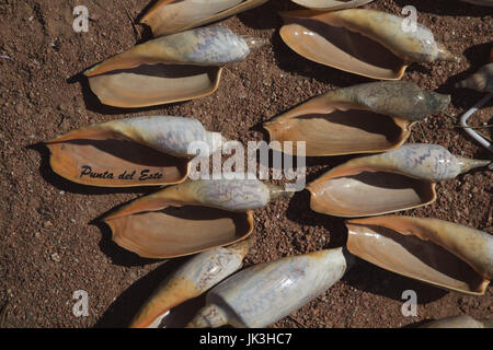 Uruguay, Punta del Este, seashell souvenirs - Stock Photo