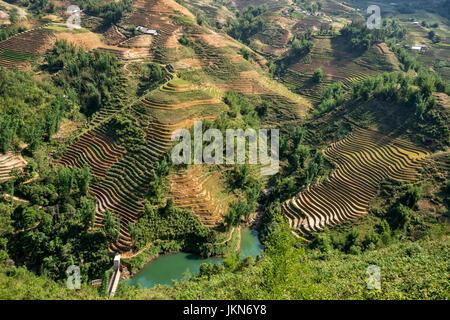 Scenic view of Rice paddies near Sapa, northern Vietnam. - Stock Photo