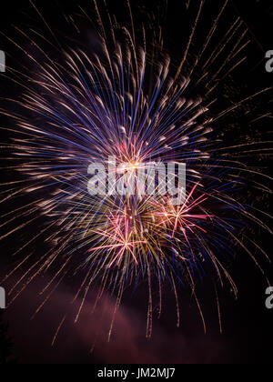 Vertical photo of red, blue, purple and orange fireworks exploding in the night sky - Stock Photo