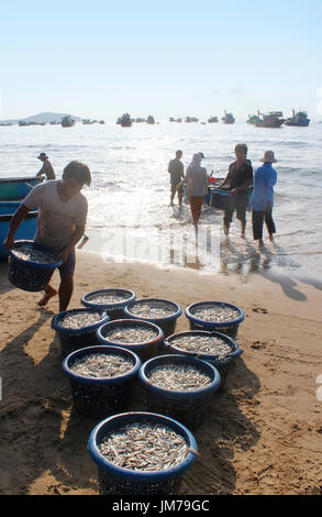 Mui Ne, Vietnam - June 27, 2017: Crowded scene of daily early morning fish market on beach with the fishermen carrying - Stock Photo