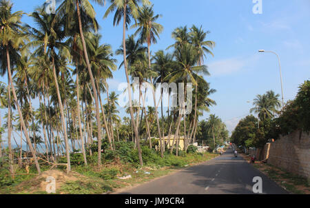 Fishing village in Mui Ne with the coconut trees and residents on the motorcycle - Stock Photo