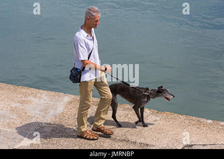 Man walking lurcher dog along harbour wall at Lyme Regis, Dorset in July - Stock Photo