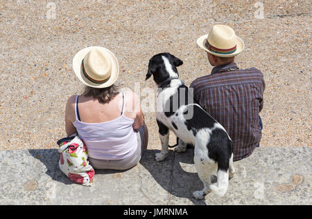 Looking down over couple sitting on harbour wall with dog at Lyme Regis, Dorset in July - Stock Photo