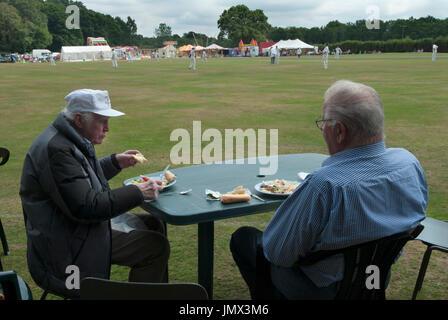 English village life cricket match in progress HOMER SYKES - Stock Photo