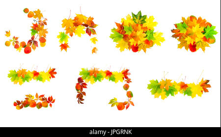 multi colored autumn leaves isolated on a white background set. collection design element - Stock Photo