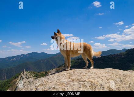 Castelmezzano (Italy) - A little altitude village, dug into the rock in the natural park of the Dolomiti Lucane, - Stock Photo