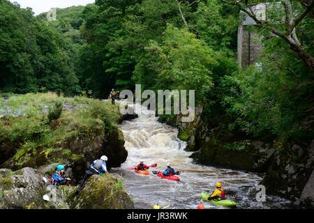 kayaking canoeing on the Teifi River at Cenarth  Falls Carmarthenshire Wales Cymru UK GB - Stock Photo