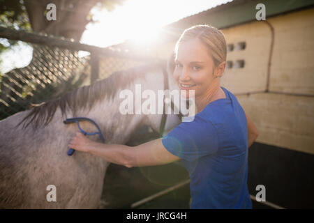 Portrait of young woman cleaning horse at barn - Stock Photo