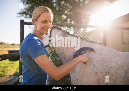 Portrait of smiling female jockey cleaning horse with sweat scraper at barn - Stock Photo