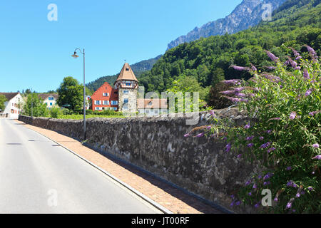 The Red House (in the possession of the Rheinberger family since 1807) and vineyard in Vaduz, Liechtenstein - Stock Photo