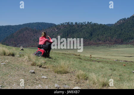 Rear view of female hiker sitting on rock at field against clear sky - Stock Photo