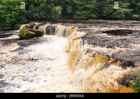 Aysgarth Falls, Wensleydale, Yorkshire Dales, England, UK - Stock Photo