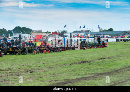 Large Crowds of people enjoying a display of Vintage traction engines and vehicles at the Driffield Steam Fair in - Stock Photo