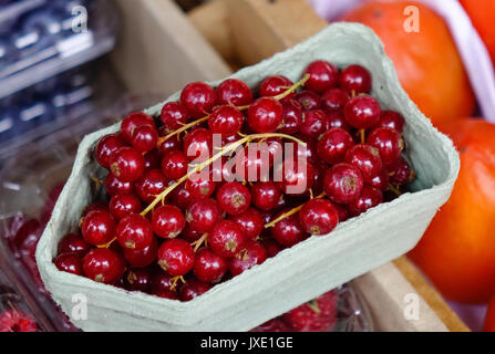 Red berry fruits at rural market in Pushkin Village, Saint Petersburg, Russia. - Stock Photo