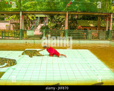 Koh Samui, Thailand - June 28, 2008: The local man putting his head in the mouth of the crocodile at Koh Samui - Stock Photo