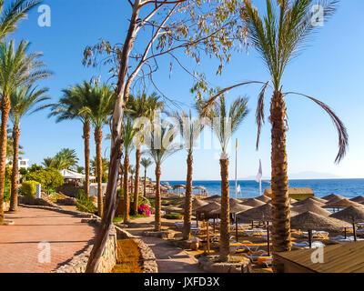 Sharm el Sheikh, Egypt - November 10, 2012: Beach at the luxury hotel Sunrice Diamond  Resort - Stock Photo