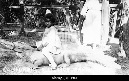Full length sitting portrait of African American child on alligator, wearing white dress, African American woman - Stock Photo
