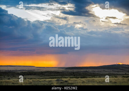 Panoramic landscape view: grey storm clouds gather over the savannah with impending rain at sunset, Masai Mara, - Stock Photo