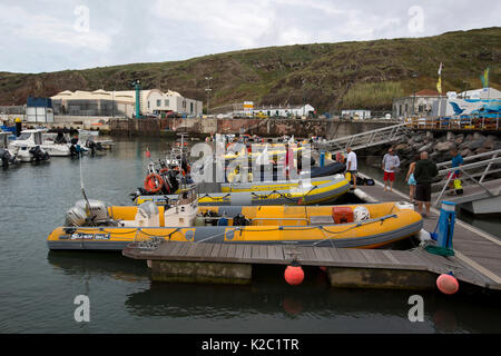 RIBs docked at Vila do Porto harbour, Santa Maria Island, Azores, Portugal, Atlantic Ocean, August 2014. - Stock Photo