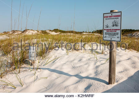 'Stay off Dunes' sign indicating beach restoration in progress along the gulf beach at Topsail Hill Preserve State - Stock Photo