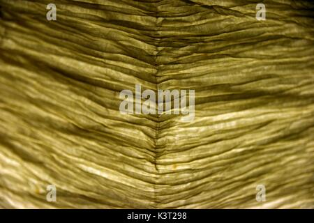 translucent lampshade, lampshades, lighted lampshade, opaque, directing the  light to a particular area, shielding - Stock Photo