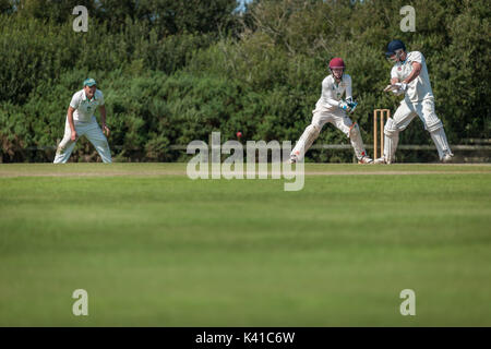 A batsman plays a shot during a Sunday League match between two local Cricket teams. - Stock Photo
