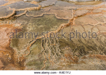 Minerva Terrace wyoming - Stock Photo