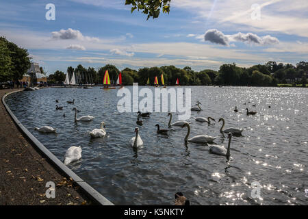 London, UK. 10th Sep, 2017. Sailing dinghies take to the water on Wimbledon Park lake on a pleasant sunny autumn - Stock Photo