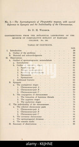 Bulletin of the Museum of Comparative Zoology at Harvard College BHL2748026 - Stock Photo