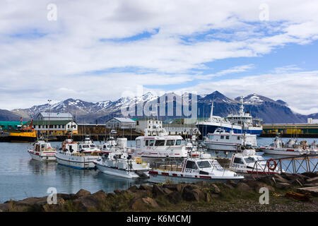 Höfn harbour in southeastern Iceland - Stock Photo