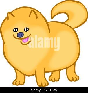 cute pomeranian spitz dog. isolated vector illustration. funny cartoon fur pet - Stock Photo