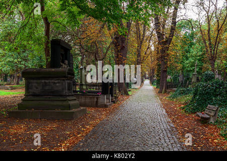 Alley covered with fallen autumnal leaves among old graves on Olsansky cemetery in Prague, Czech Republic. - Stock Photo