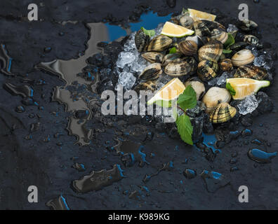 Fresh uncooked clams with lemon, herbs and spices on chipped ice over dark slate stone backdrop - Stock Photo