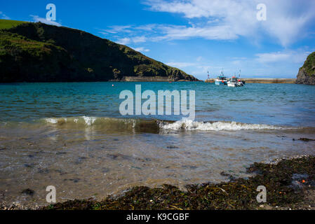 the harbour and beach at port isaac Cornwall - Stock Photo
