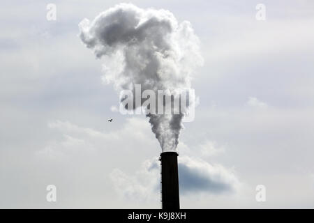 Smoke Emitting From Factory Smoke Stack - Stock Photo