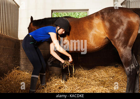 Young woman cleaning horse's hoof at box stall - Stock Photo