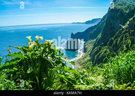 Rocha de Navio Santana Madeira Island - Stock Photo